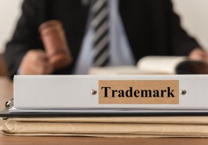 Trademark Judge