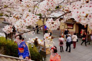 JR四国が民泊参入、4月中旬に京都市で簡易宿所「4S STAY 京都九条」開業。