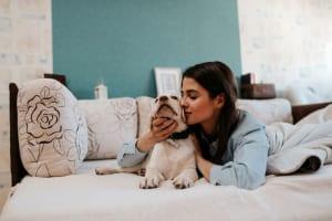 Hotels.com「お客様が選ぶ人気宿アワード 2019」発表、人気の高まりから「ペットにベストなホテル」部門を追加